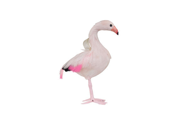 DOWN TO THE WOODS Pale Pink Flamingo Dec
