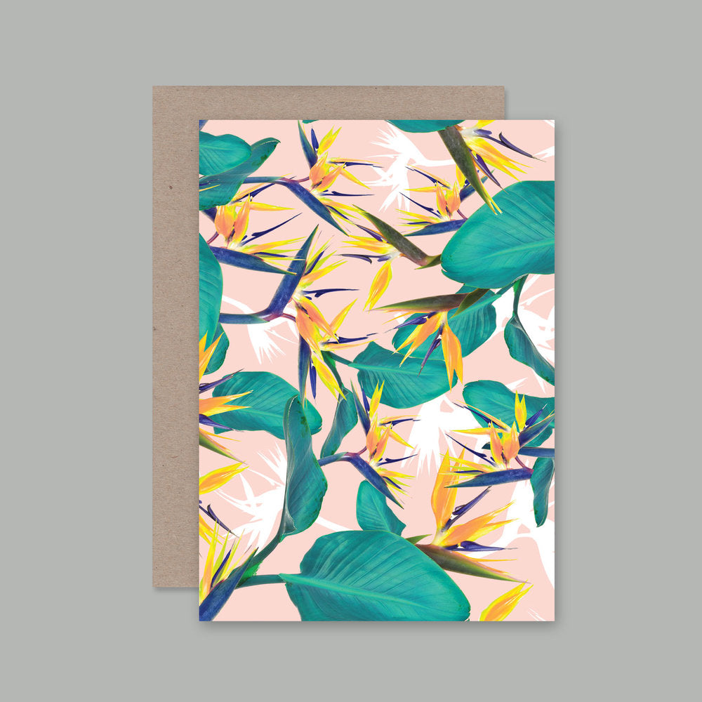 AHD Birds of Paradise greeting card