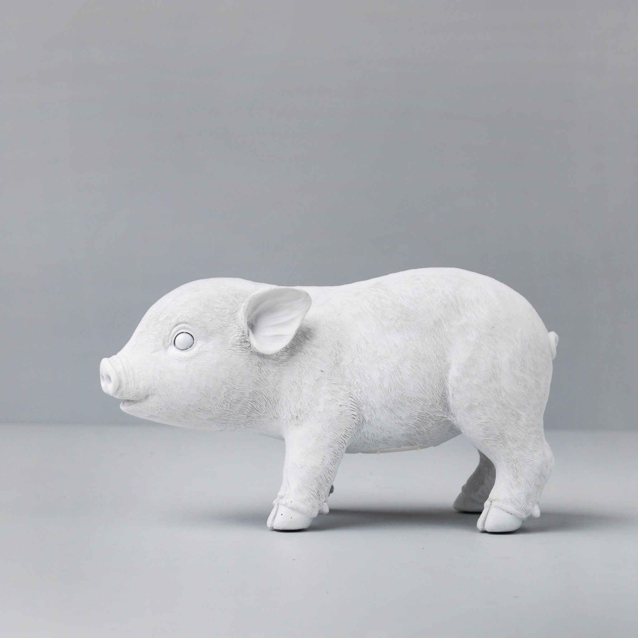 WHITEOOSE Pig Money Box - White