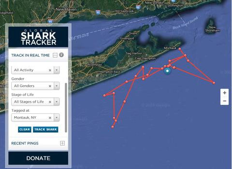 Tracking Sharks off Long Island