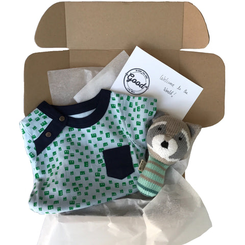 Baby Gift Box in Blue & Green