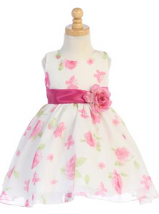 Spring and Bloom Dress