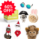 Bundle Saver - Fun Cat Costumes