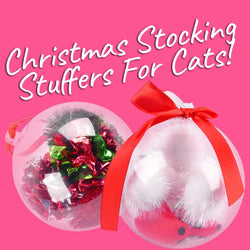 Christmas Stocking Stuffers For Cats