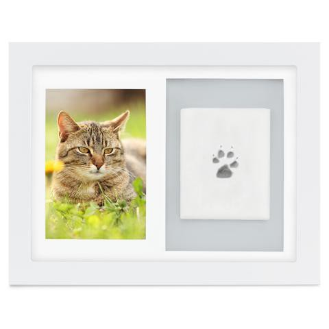 Inkless Cat Paw Print Kit