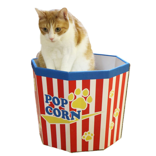 Cute Two Levels Cat Popcorn Box