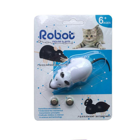 Robot Mouse & Ant Cat Toy