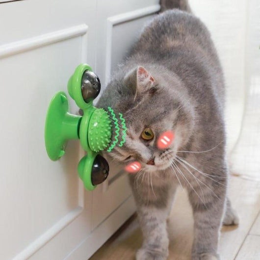 Windmill Cat Toy 5-In-1 (Random Color)