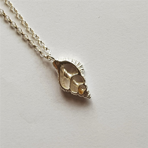Sterling Silver Nassarius Reticulatus Center Shell Pendant, Necklace