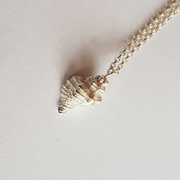 Sterling Silver Welk Shell Pendant, Necklace