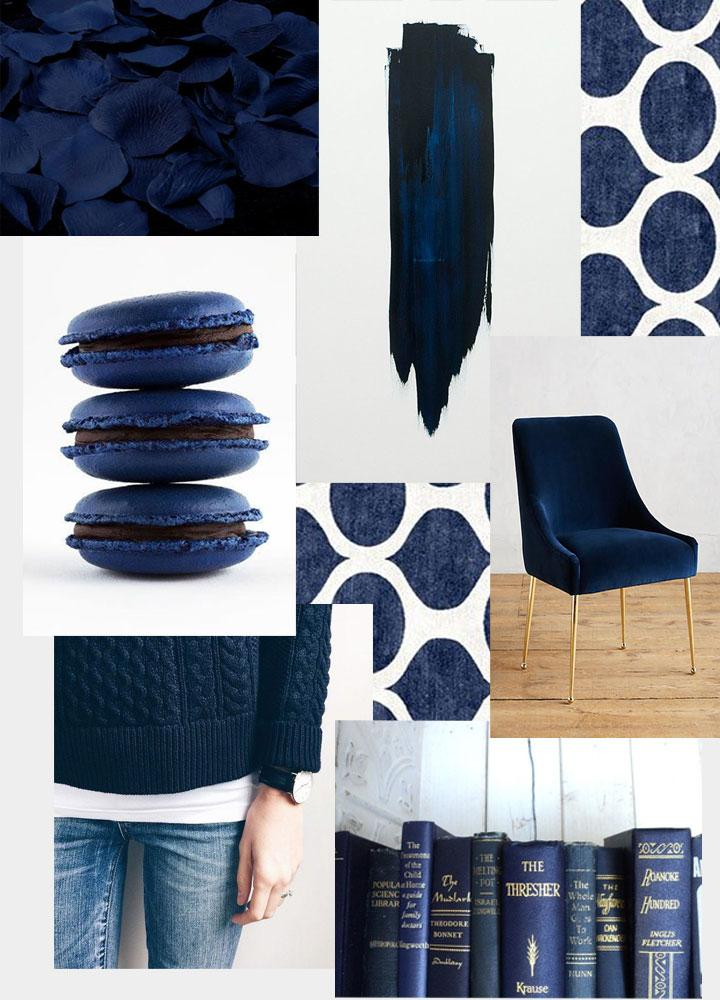 Color Crush: Navy Peony