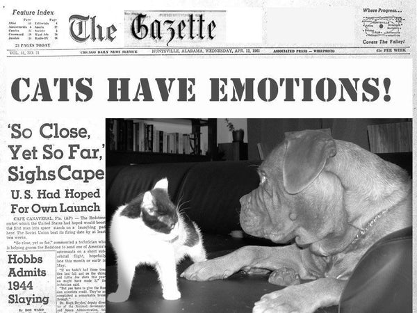 The Tuft & Paw Gazette – Monday, January 30th, 2017