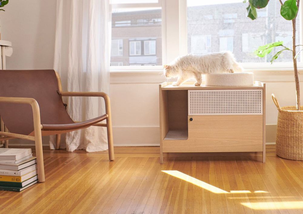 stylish cat perch and bed in living room