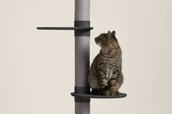 Frond Cat Tree - Tuft and Paw
