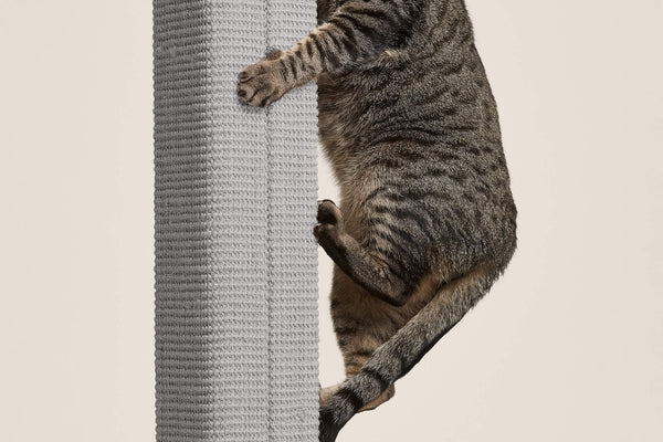 Zip Scratching Post - Tuft and Paw
