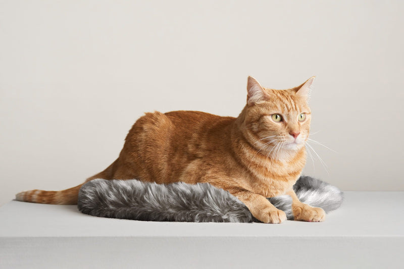 Floof Cushion discontinued - Tuft and Paw