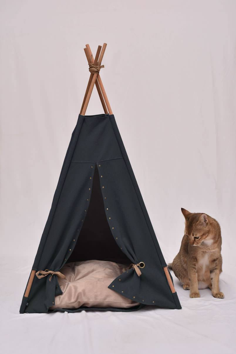 Back-to-black-cat-teepee