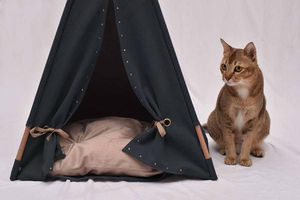 Back to Black Cat Teepee - Tuft and Paw