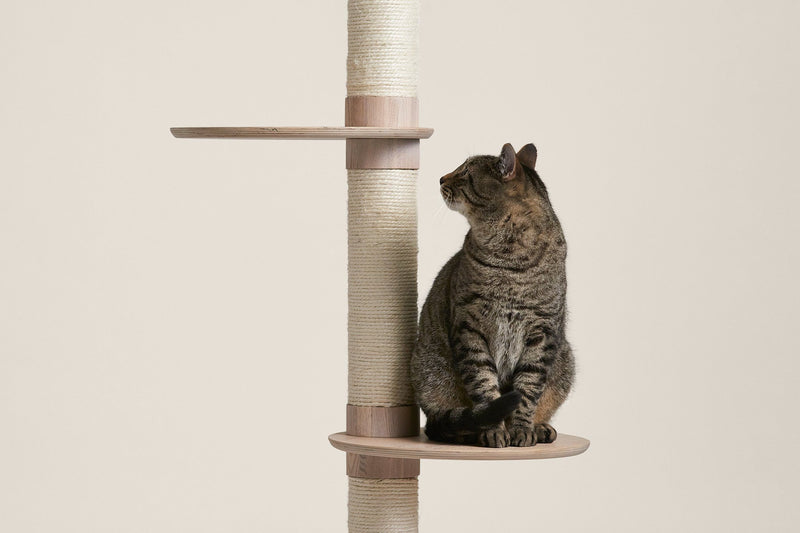 Frond (push live on launch) Cat Tree - Tuft and Paw