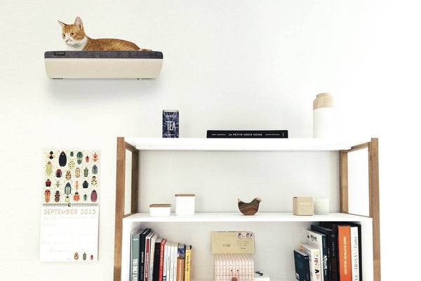 Gatto Pertica Cat Perch - Tuft + Paw