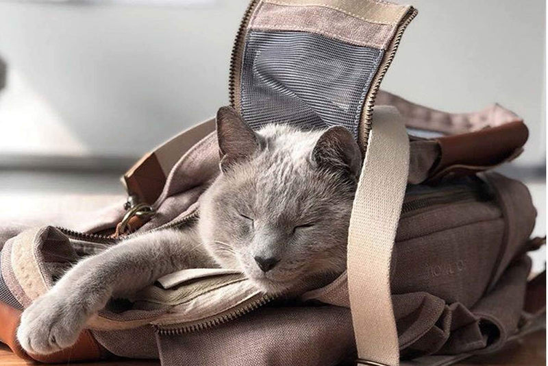 Kyari Bag Cat carrier - Tuft and Paw