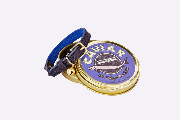 Caviar Cat Collar Cat Collar - Tuft and Paw