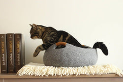 Gatto Basket Cat Bed - Tuft + Paw