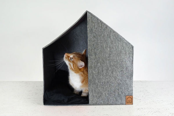 Cottage Cat House - Tuft and Paw