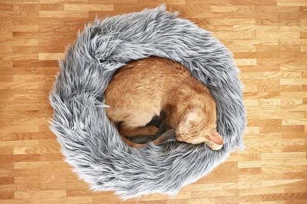 Capello Cat Bed - Tuft + Paw