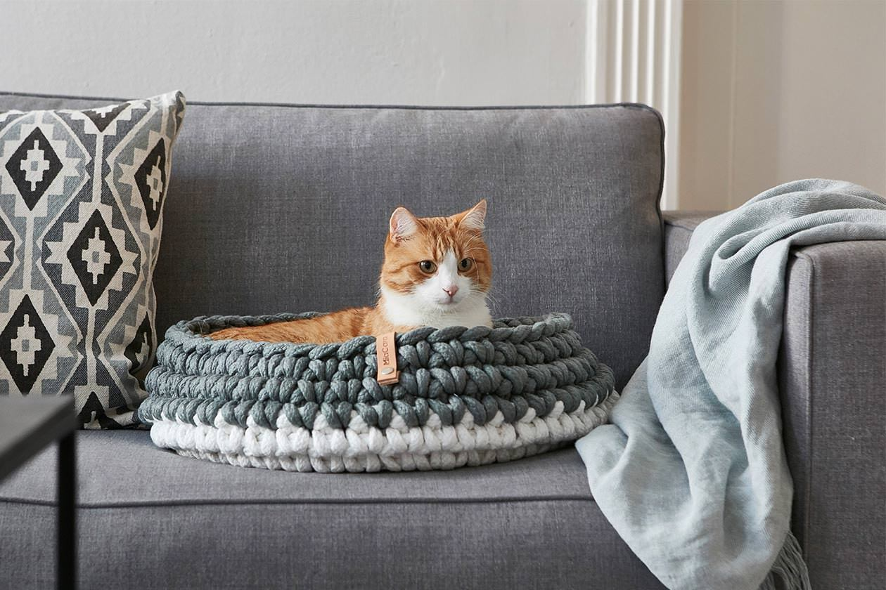Best Cat Beds Of 2020 So Far Tuft Paw