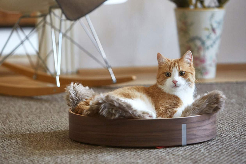 Anello Cat Bed - Tuft + Paw