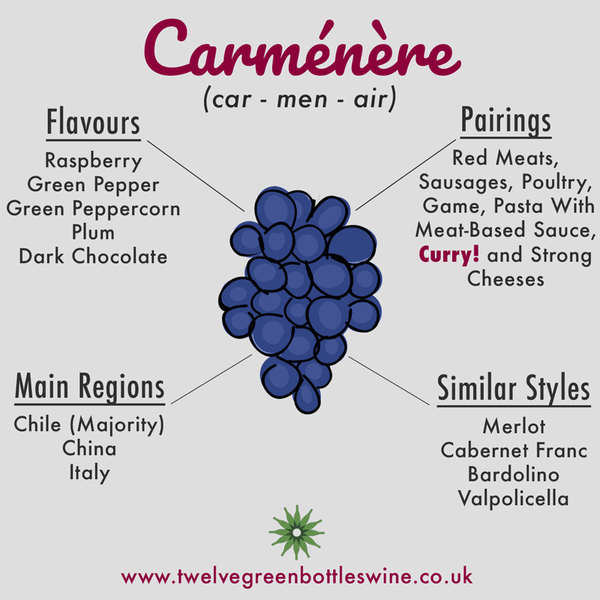 Carmenere grape variety infographic