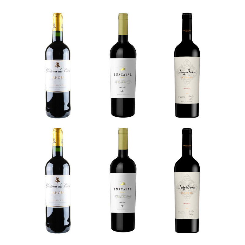 Premium Malbec Wine Selection – 6 Bottles