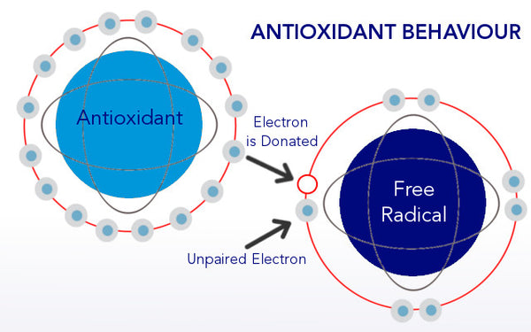 Antioxidants and Free Radical Damage