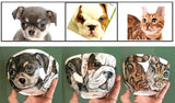 """Multi-Pet"" Custom Hand-painted Porcelain Bowl"