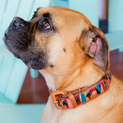 Handwoven Dog Collar