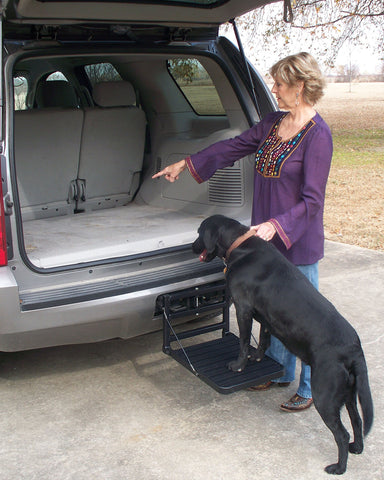 SUV Pet Step
