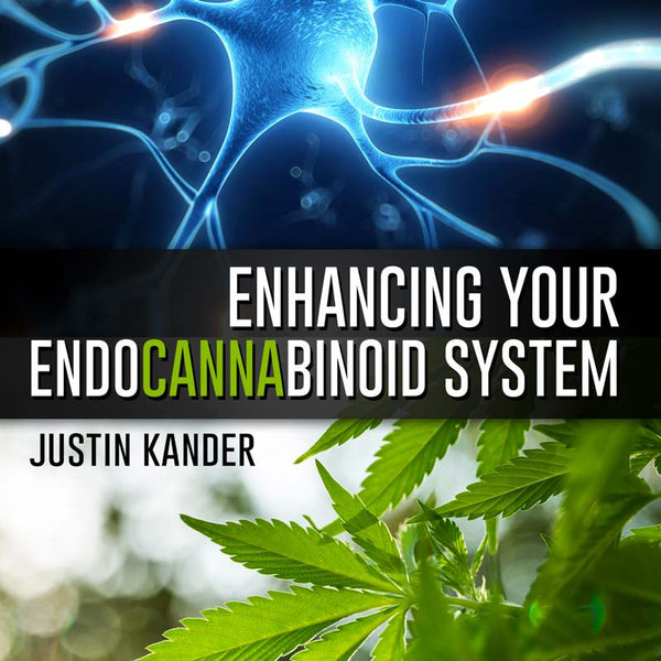 Enhancing Your ECS by: Justin Kander