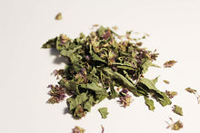 Anise Hyssop Leaf / Flower- Certified Biodynamic and Certified Organic