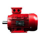 IJA100L-2-24, 4 HP, 3600 RPM, 208-230/460V, 100L, AMPH100LAA2-460 - METRIC MOTOR - MAXMOTION - electric motors - [product_tags]- motor electric - moteur électrique - moteurs - drive - replacement - venmar - hvac - méchoui - capacitor - condensateur
