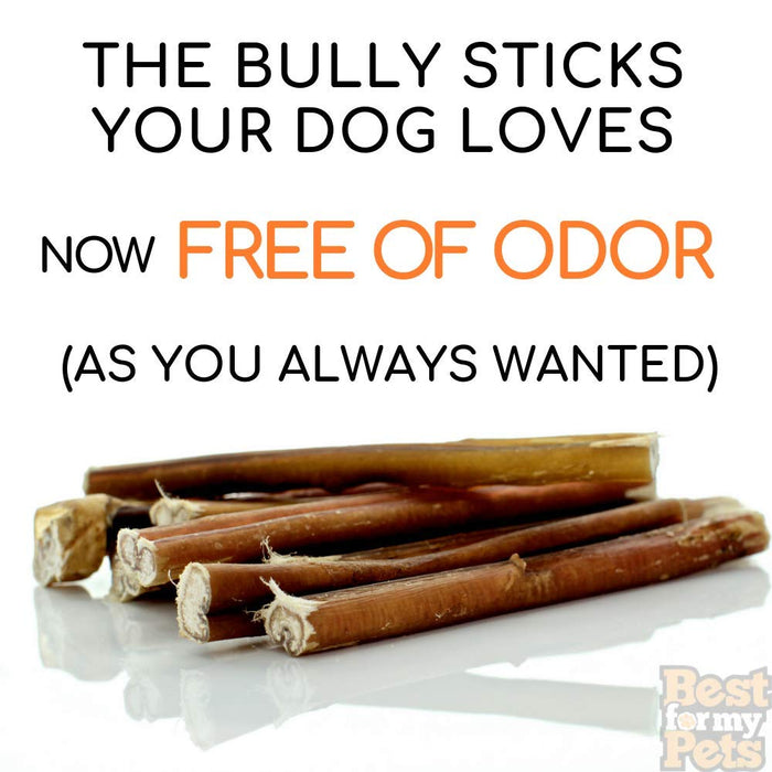 6-Inch Odor-Free Bully Sticks, 8-Ounce Bag