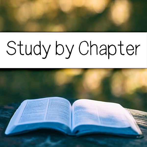 Study by Chapters