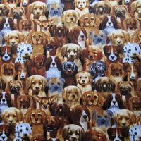 7/8 Yards Mini Puppies Multi Dog Breeds Timeless Treasures #2824a - Quilting & Sewing Fabric
