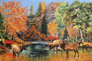 The Elk Gathering Wildlife Birch Trees Riverwoods Collection #2631