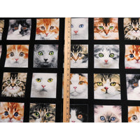 Adorable Pets Realistic Cats 4 Blocks 23 Panel Cotton Elizabeths Studio #7583 - Quilting & Sewing Fabric