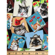 Curious Cats Kittens Photos Patch Black Elizabeths Studio #3328 - Quilting & Sewing Fabric