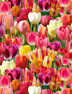 Packed Tulips Nature Bright Floral Timeless Treasures #7876 - Quilting & Sewing Fabric