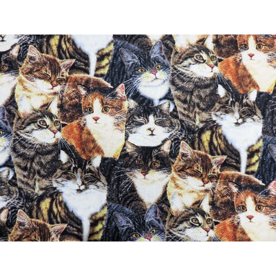 Sew Curious Packed Cats & Kittens Wilmington Prints #6094 - Quilting & Sewing Fabric