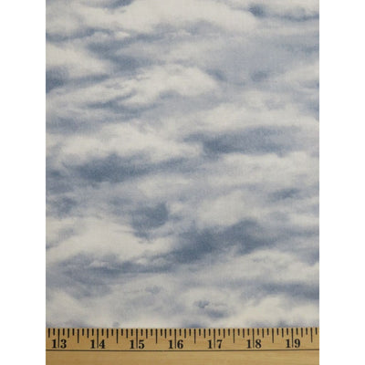 Wild at Heart Grey Cloudy Sky Nature Outdoors Wilmington Prints #2437 - Quilting & Sewing Fabric