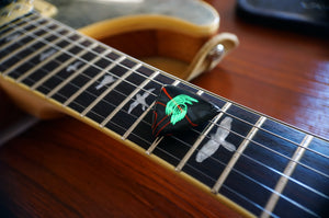 Custom Acrylic Guitar Pick Glow-in-The-Dark Plectrum Raven Odin